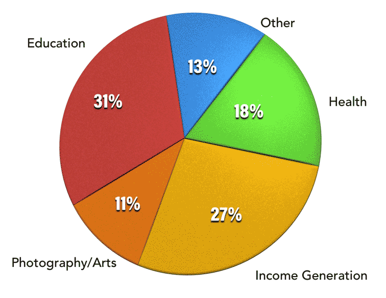 pie chart Other 13%,Health 18%,Income Generation 27%,Photography/Arts 11%,Eduction 31%